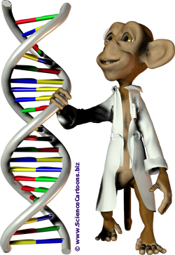 external image ScienceCartoons_biz_biology_cartoon_lab_monkey_dna.png
